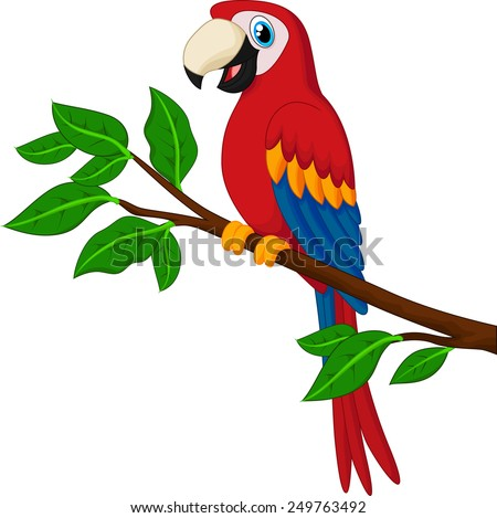 Parrot Cartoon Pictures Cartoon Red Parrot on a Branch