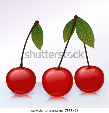 3 cherries on reflecting surface (other fruits & berries are in my gallery)