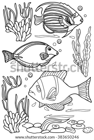 Coloring Book Hand Drawn Adults Children Sea Animals Black And White