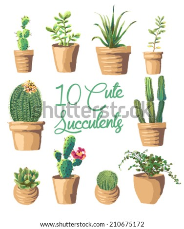 10 Cute succulents vector graphic set - stock vector