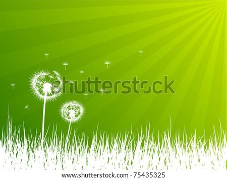 Dandelions background - stock vector