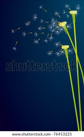 Dandelions vector background - stock vector