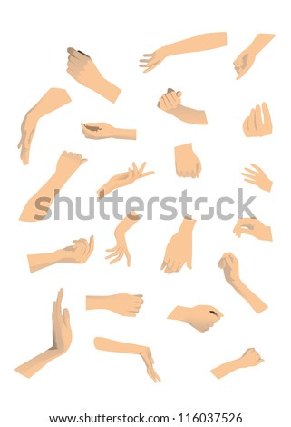21 different hand on white background. - stock vector