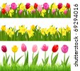 3 Flower Borders From Tulips And Narcissuses, Isolated On White Background, Vector Illustration - stock photo