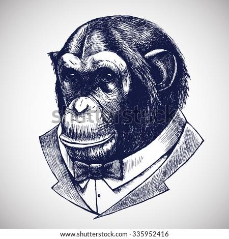 ?himpanzees in the tuxedo. Vector illustration. - stock vector