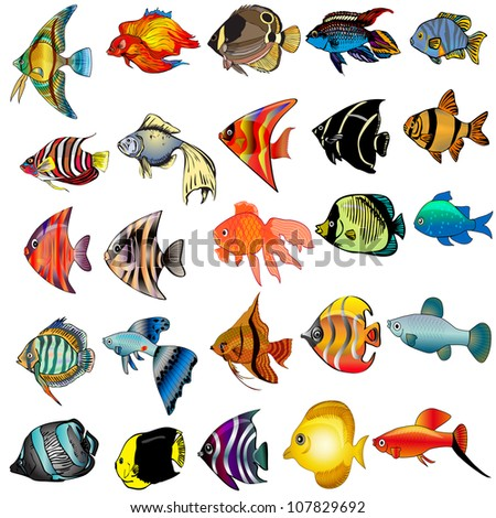 illustration kit fish is insulated on white background - stock vector