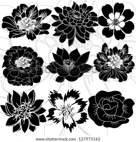 9 kinds of beautiful flowers, vector graph - stock vector