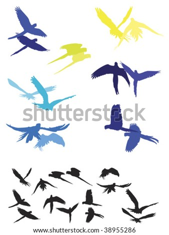 macaw pairs showing their typical flight, parallel and synchronized to each other - stock vector