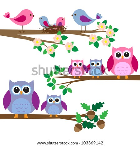 Owls and birds sitting on branches. Vector set - stock vector