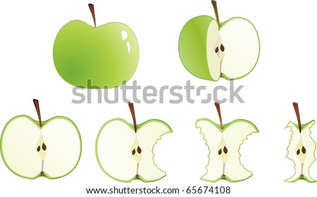 set of apples from whole to stub