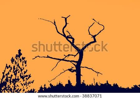 silhouette dry tree - stock vector
