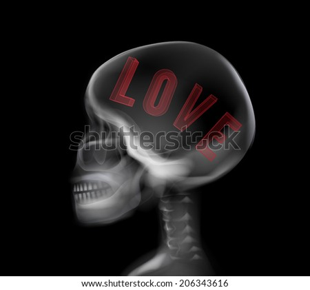 Skull X-ray vector, the skull have alphabet  love  inside - stock vector