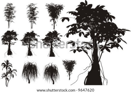 10 Tropical trees, grass, plant vector