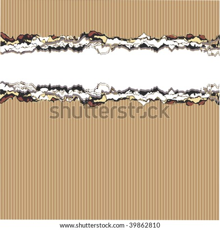 Vector Ripped Cardboard - stock vector