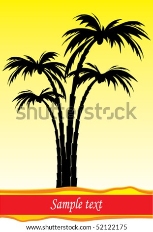 vector silhouette palm tree