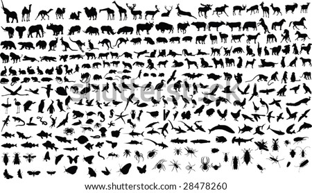 300 vector silhouettes of animals (mammals, birds, fish, insects) - stock vector