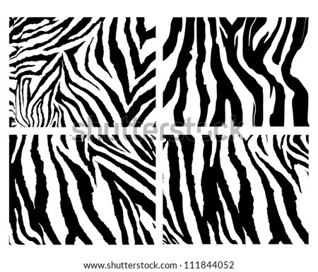 4 zebra pattern vector - stock vector