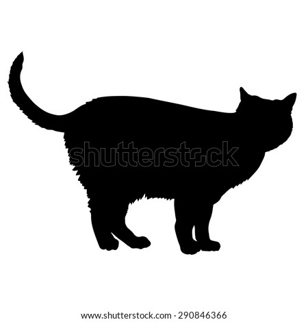 A black silhouette of a cat - stock vector