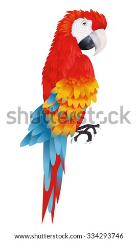A bright macaw parrot isolated on white background vector illustration - stock vector