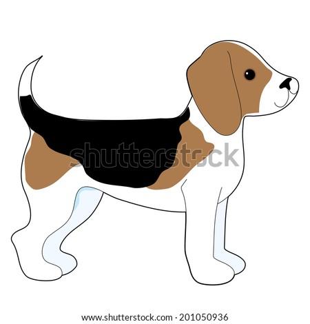A cartoon drawing of a cute little Beagle puppy - stock vector