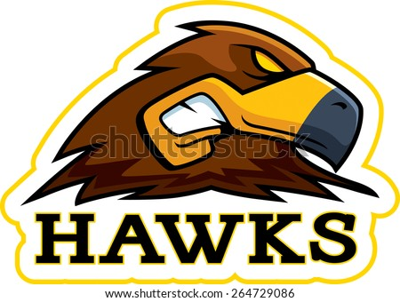 A cartoon illustration of a hawk mascot head. - stock vector