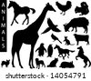 A collection of Animal silhouettes - stock photo
