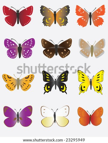 A collection of colored butterflies. Vector illustration