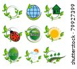A collection of natural elements for design. Vector illustration - stock vector