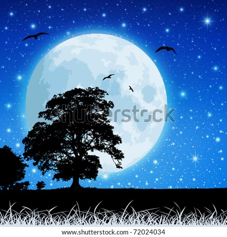 A Country Meadow Landscape with Moon and Night Sky - stock vector
