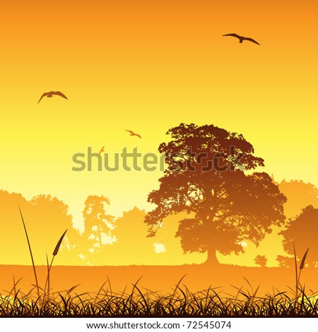 A Country Meadow Landscape with Trees and Birds - stock vector