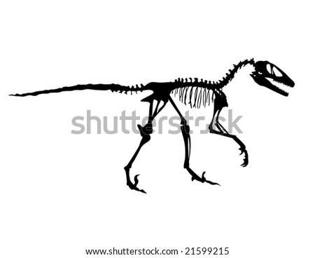 A Deinonychus fossil vector. - stock vector