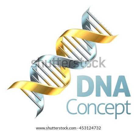 A double helix DNA chromosome strand in gold and silver genetics concept - stock vector