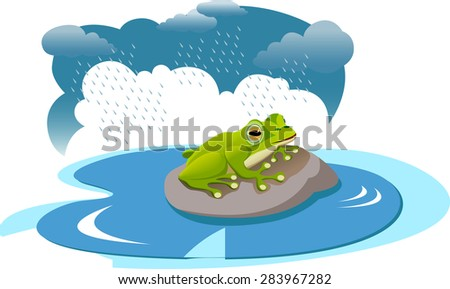 A frog on rock in a pond during rain. - stock vector