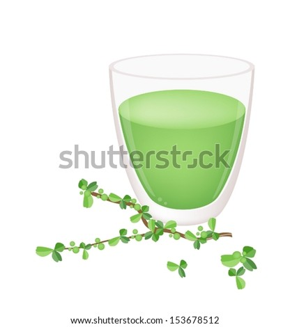 A Glass of Matcha Green Tea with Green Leaves, Green Tea Is A Highly Nutritious and Refreshing Drink