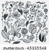 A hand drawn flower set. Vector illustration. - stock vector
