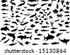 A hundred silhouettes of fish and sea animals - stock photo