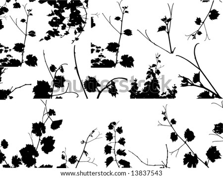 A lot of grape bunch.Vector floral background.See similar pictures in my portfolio. - stock vector