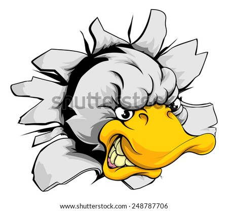 angry duck stock photos images amp pictures shutterstock