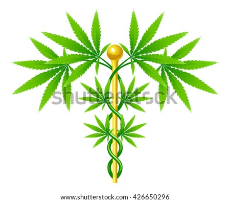 A medical marijuana plant caduceus concept symbol with cannabis plant with leaves intertwined around a rod  - stock vector