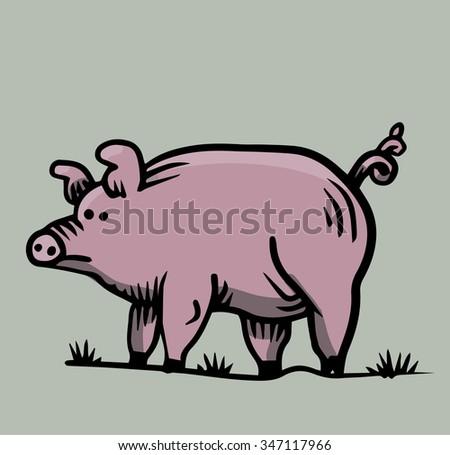 A pig - stock vector