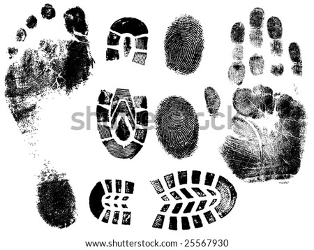 A Selection of highly detailed vector hand, finger feet and shoeprints.