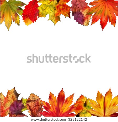 A set of colorful autumn leaves on a white background.