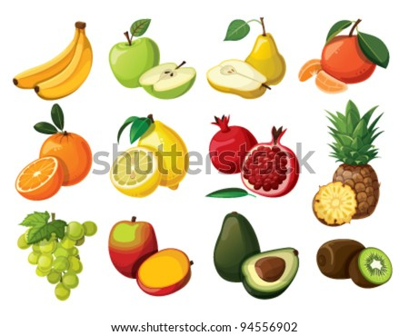 A set of delicious fruit. Isolated on white background. - stock vector