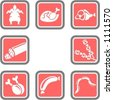 A set of 8 food vector icons. - stock vector