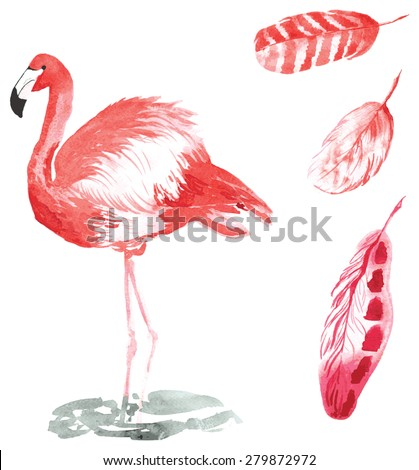 A set of hand-drawn watercolor containing bird Phoenicopterus and feathers - stock vector