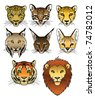 A set of 8 large predatory cat heads. Eps 8 Vector. - stock vector