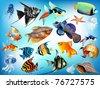 A set of marine animals, fish, jellyfish, shells, starfish, in different variants. - stock photo