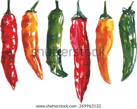 A set of six watercolour chili peppers, vector drawing - stock vector