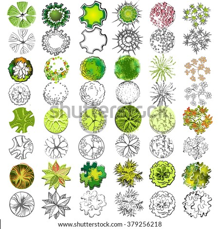 Set Treetop Symbols Architectural Landscape Design Stock Vector 379256218 - Shutterstock