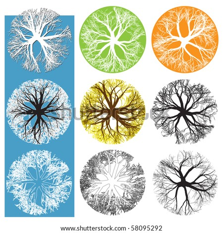 Tree Plan Stock Images Royalty-Free Images U0026 Vectors | Shutterstock
